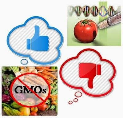 Genetically modified food Essay Example Topics and Well