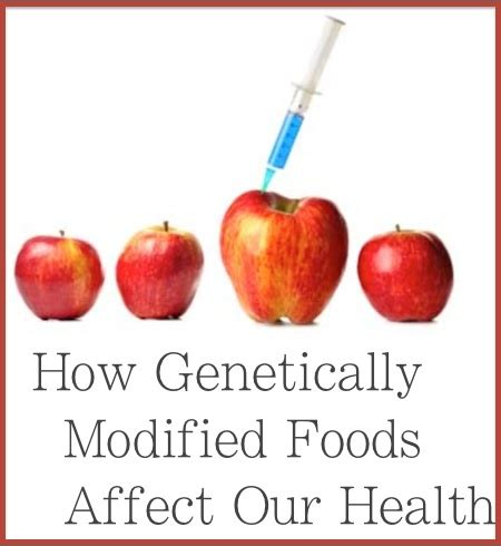 Advantages and disadvantages of genetically modified food essay